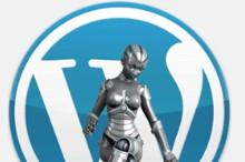 wordpress对正常访客隐藏网站标题功能实现原理(蜘蛛可以正常访问)