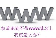 百度只给不带www的域名权重,该怎么进行SEO处理