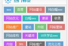 野狼SEO团队官网增加热门标签功能,欢迎使用