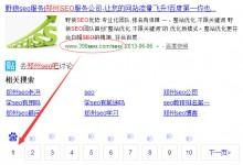 野狼的SEO宣传单页进入郑州seo第十名