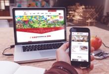 手机+电脑网站双域名程序自适应企业站案例展播